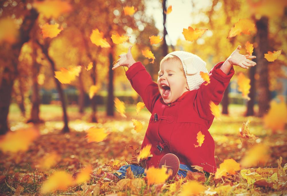 Małe dziewczynka siedzi na liściach w parku i unosi rączki z radości