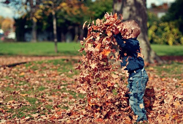 Bazowa garderoba dziecka na jesień