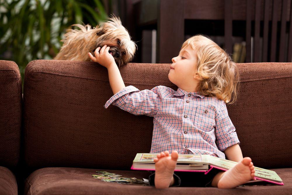 Psy Dla Dzieci Tak Czy Nie Najlepsze Rasy Psów Dla Dziecka